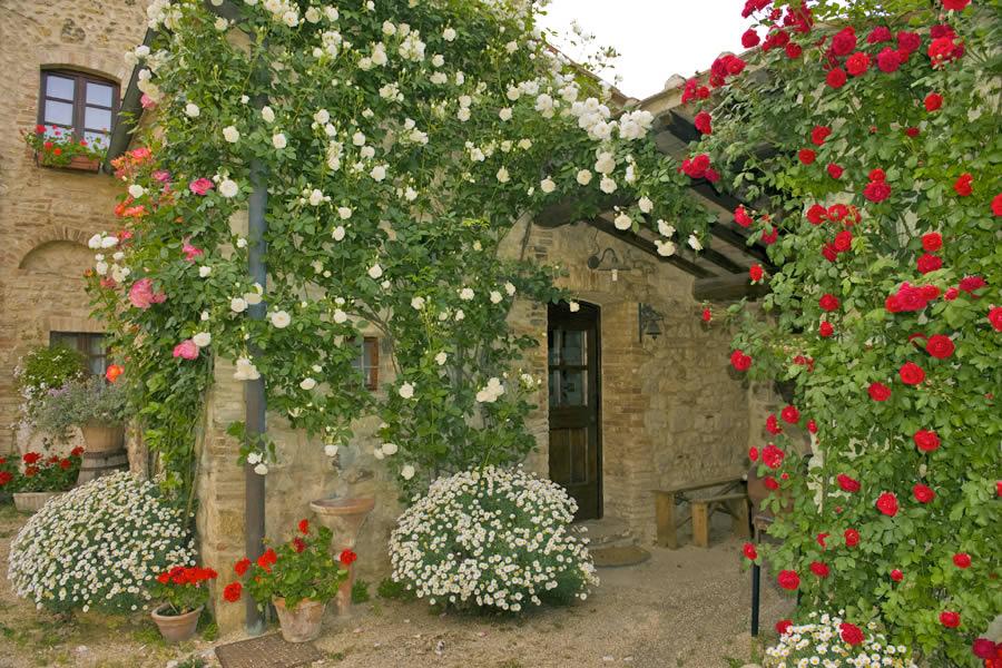 Fortezza de 39 cortesi ambienti for Ambienti esterni giardini